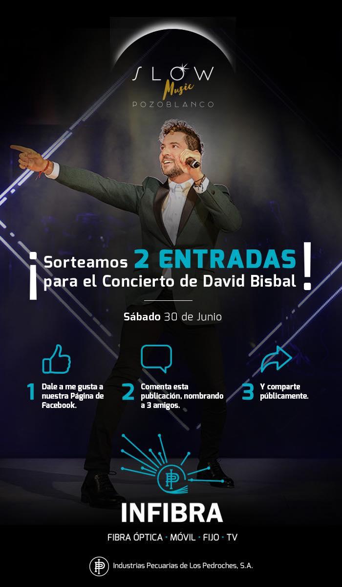 Sorteo 2 entradas David Bisbal Pozoblanco 2018